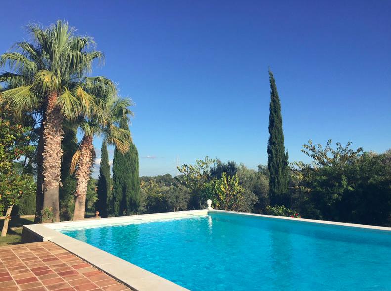 Top 5 - Mallorca mit Kind & Kegel