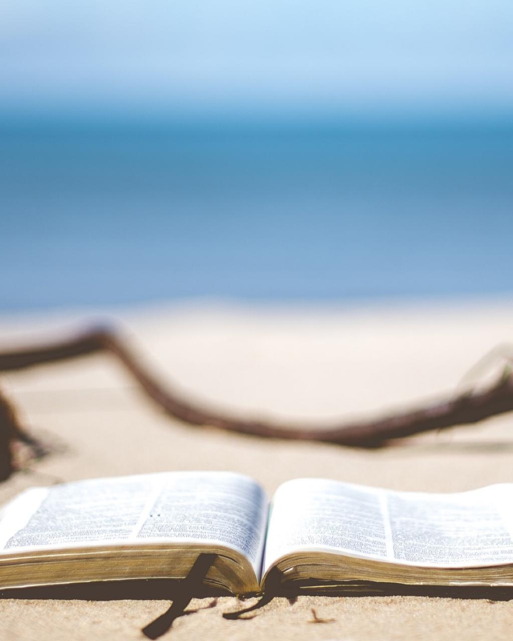 Lesetipps für den Urlaub
