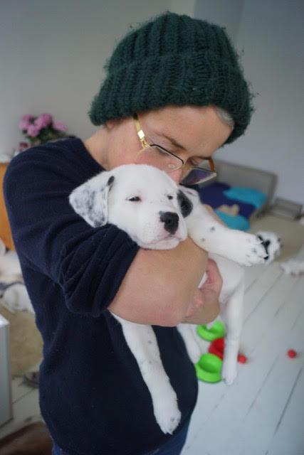 Mein Leben als Hund - Teil 5