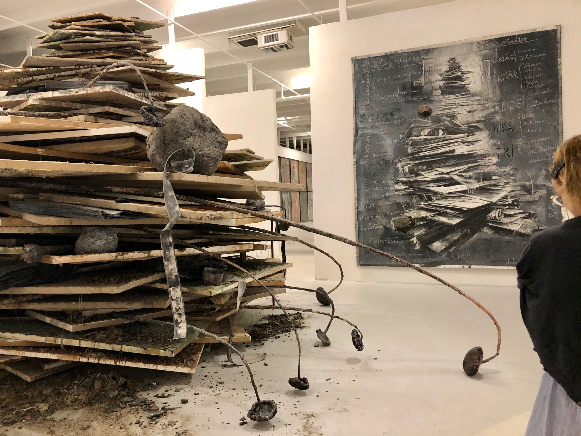 Margulies Collection - Anselm Kiefer Erdzeitalter